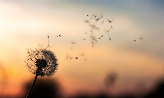Heaven waits with baited breath